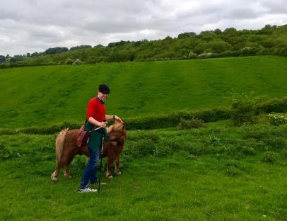 F pets a pony!