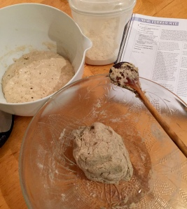 Pate fermente & beginnings of dough